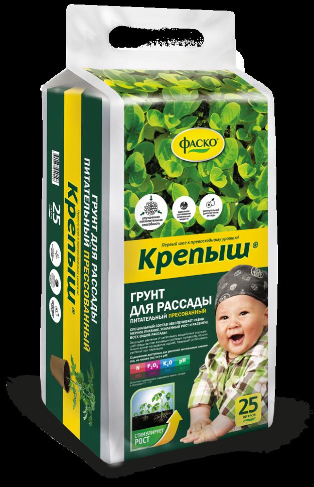 крепыш  English translation  babla RussianEnglish